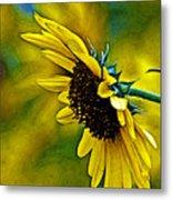 Kansas Sunflower Metal Print