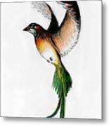 Kathleen's Bird Metal Print
