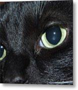 Katy - The Eyes Have It Metal Print
