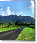 Kauai Countryside Metal Print