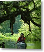 Kayaking In Dismal Swamp Metal Print