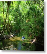 Kayaking In Tropical Paradise Metal Print