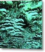 Kealakekua Plate Coral Metal Print