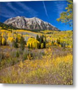 Kebler Pass Gold Metal Print