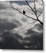 Keeping Above The Storm Metal Print