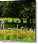 Keeping Out The Wild Metal Print