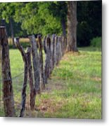 Keeping The Cows At Home Metal Print