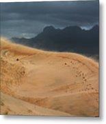 Kelso Dunes Shifting Sands Metal Print