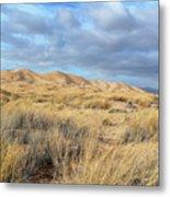 Kelso Dunes Wilderness Metal Print