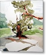 Kennedy Meadows Tree Metal Print