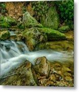 Kens Creek In Cranberry Wilderness Metal Print