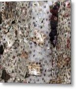 Kenyan Woman Metal Print