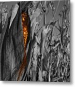Kernels And Silk Metal Print