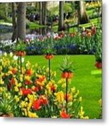 Keukenhof Ornamental Garden. Metal Print