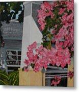 Key West Bougainvillea Metal Print by John Schuller