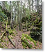 Keyhole Side Trail Metal Print