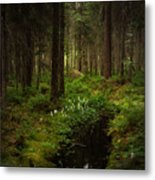 Keys In The Woods Metal Print