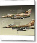 Kfir And Netz Metal Print