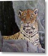 Khensu,  Jaguar Metal Print