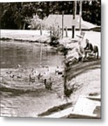 Kids N Ducks Metal Print