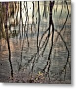 Kill Creek 8394 Metal Print