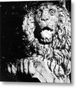 King Of The Concrete Jungle Metal Print