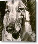 King Of The Dogs Metal Print