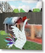 King Of The Hen House Metal Print