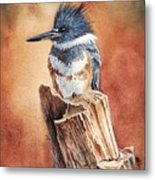 Kingfisher I Metal Print
