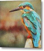 Kingfisher's Perch Metal Print