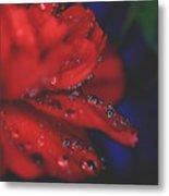 Kisses In The Rain Metal Print