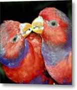 Kissing Birds Metal Print