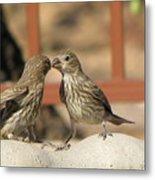 Kissing Cousins Metal Print