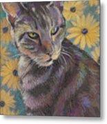 Kit Cat Metal Print