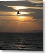 Kite Sunset Metal Print