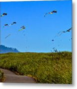 Kites Metal Print by Robert Bales
