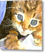 Kitten In Blue Metal Print