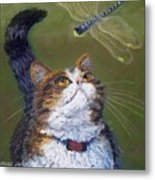 Kitty And The Dragonfly Close-up Metal Print