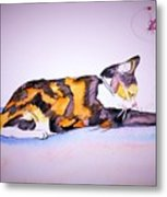 Kitty Cat Metal Print