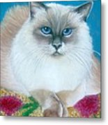 Kitty Coiffure Metal Print