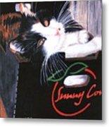 Kitty In A Box Metal Print