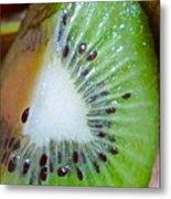 Kiwi Seed Display Metal Print