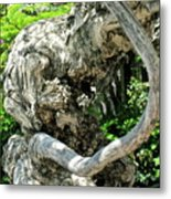 Knarly Man Metal Print