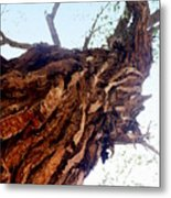 knarly Tree Metal Print