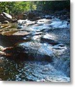Knee Deep In Mountain Water Metal Print