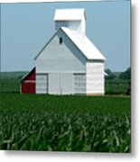 Knee High By The Fourth Of July Metal Print