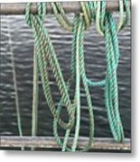 Knot Of My Warf II Metal Print by Stephen Mitchell