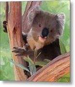Koala  Painting Metal Print by Michael Greenaway
