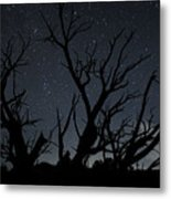 Kodachrome Basin Night Sky 2963 Metal Print