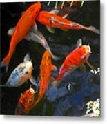 Koi Fish II Metal Print